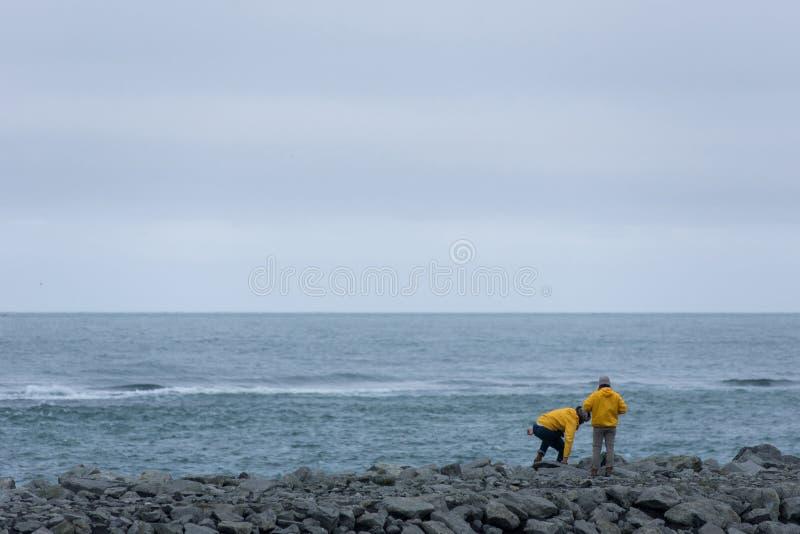 大西洋海岸,金刚石海滩,冰岛 免版税图库摄影