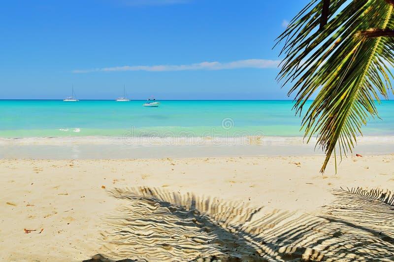 大西洋海滩,棕榈树,沙子,船在海洋,反对蓝天和云彩 免版税库存图片