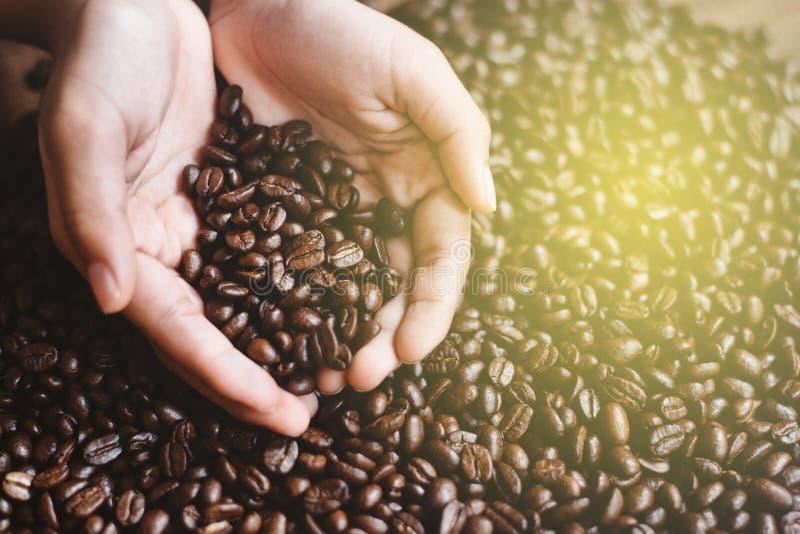 大角度关闭人在杯形手上的拿着咖啡豆 免版税库存图片