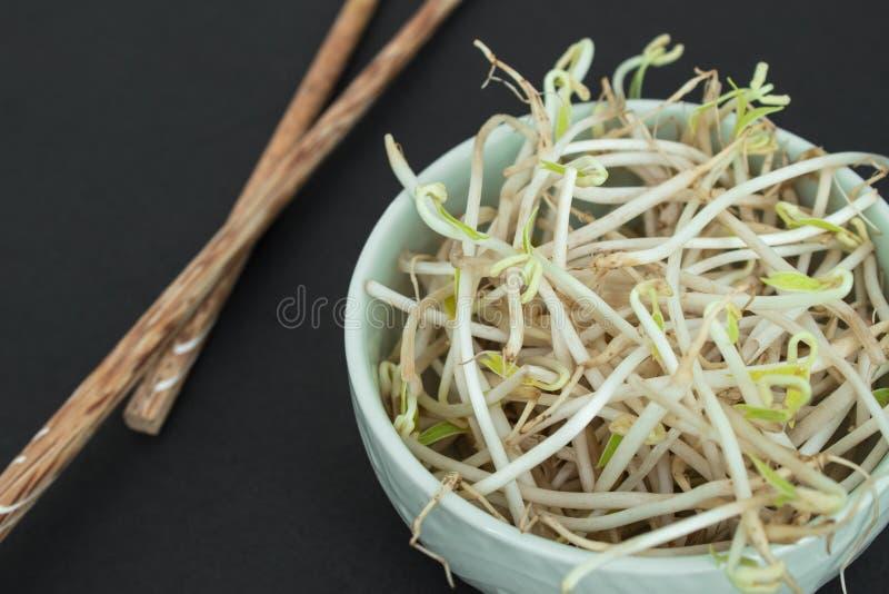 大豆在绿色碗和中国木棍子发芽 免版税库存图片