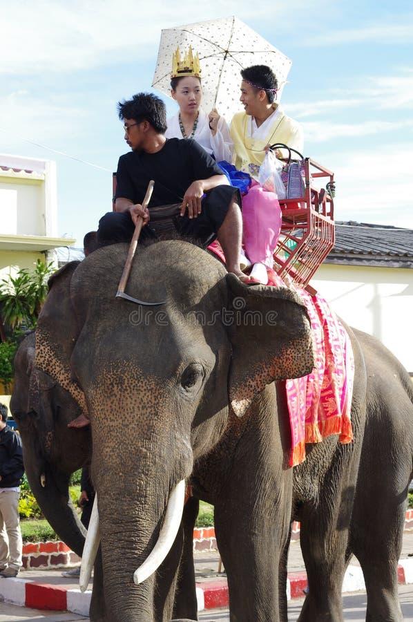 大象乘驾 免版税库存照片