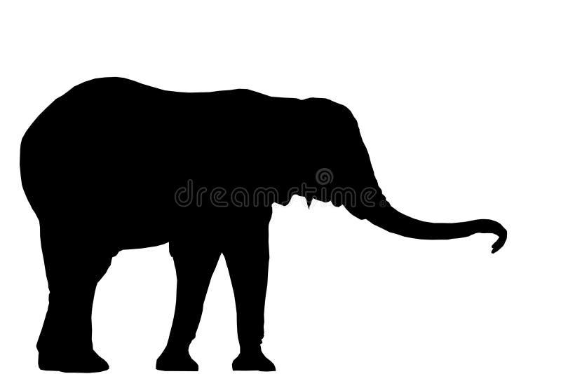 大象剪影 向量例证