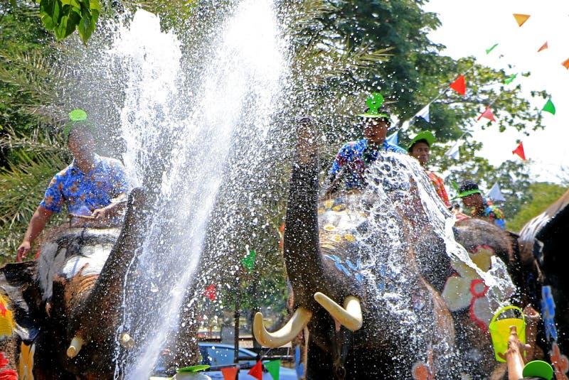 大象戏剧在Songkran期间的水争斗 库存照片