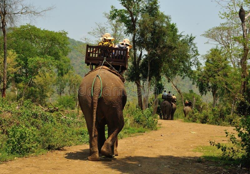 大象村庄是圣所在琅勃拉邦附近 免版税库存照片