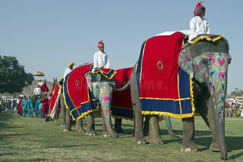 大象游行 库存照片