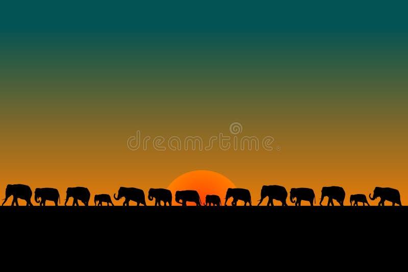 大象牧群 库存例证