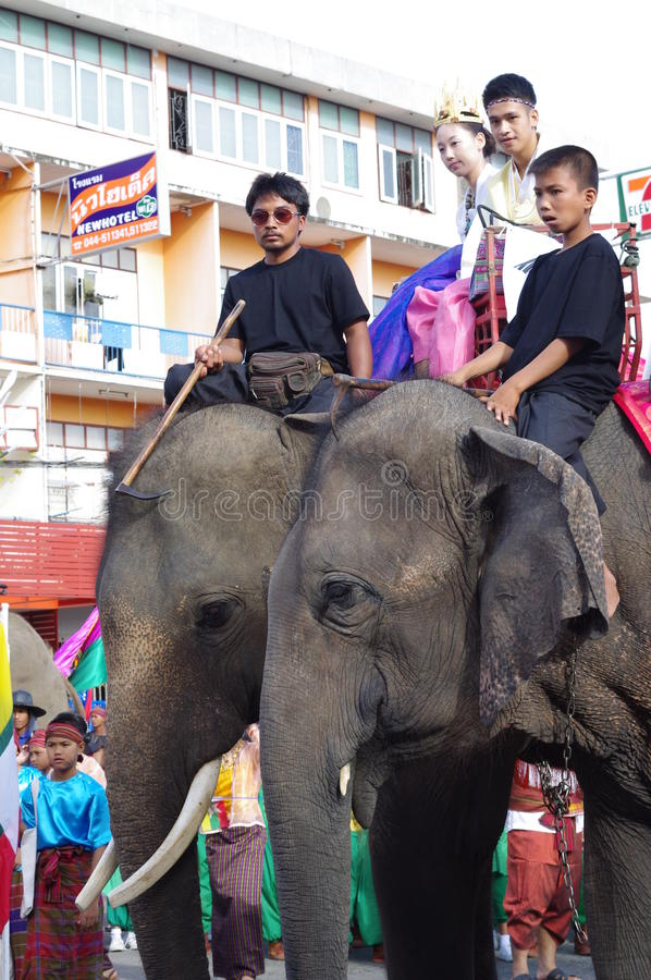 大象节日在素林 免版税库存图片