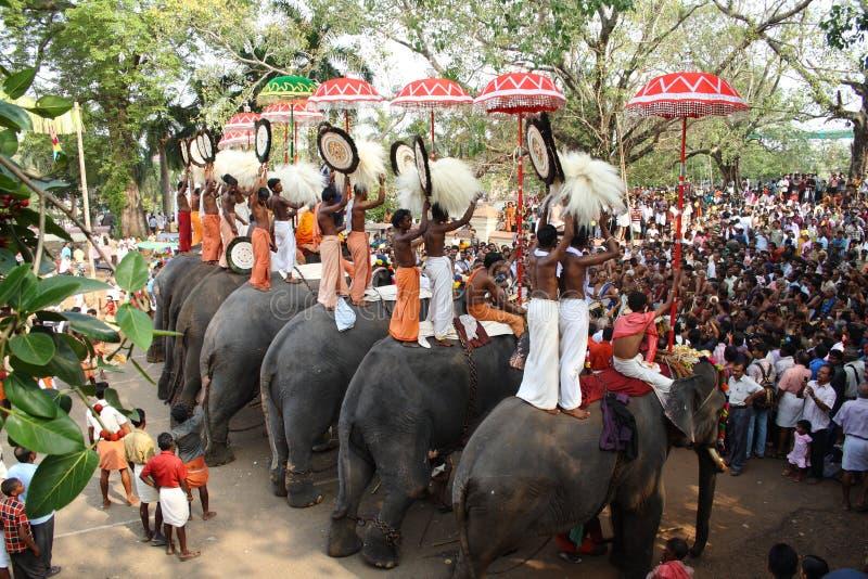 大象节日thrissur 免版税库存照片