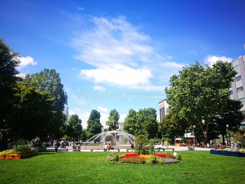 大通公园风景在夏天 库存图片