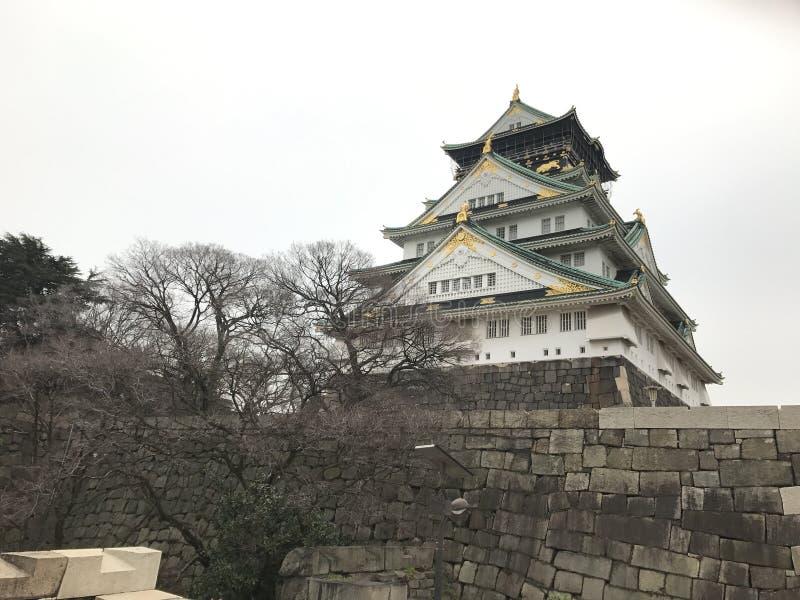 大阪城堡顶视图  库存图片