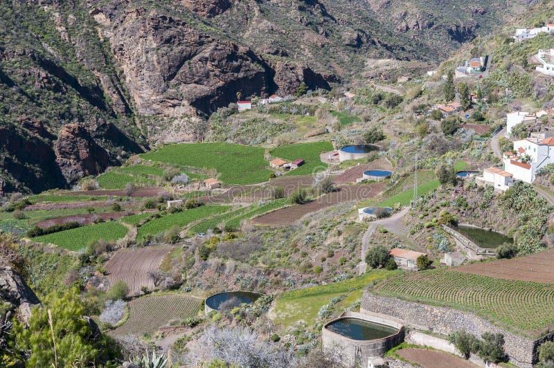 大阳台的灌溉池塘 库存照片