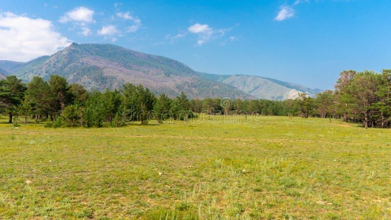 大陆贝加尔湖干草原 库存照片