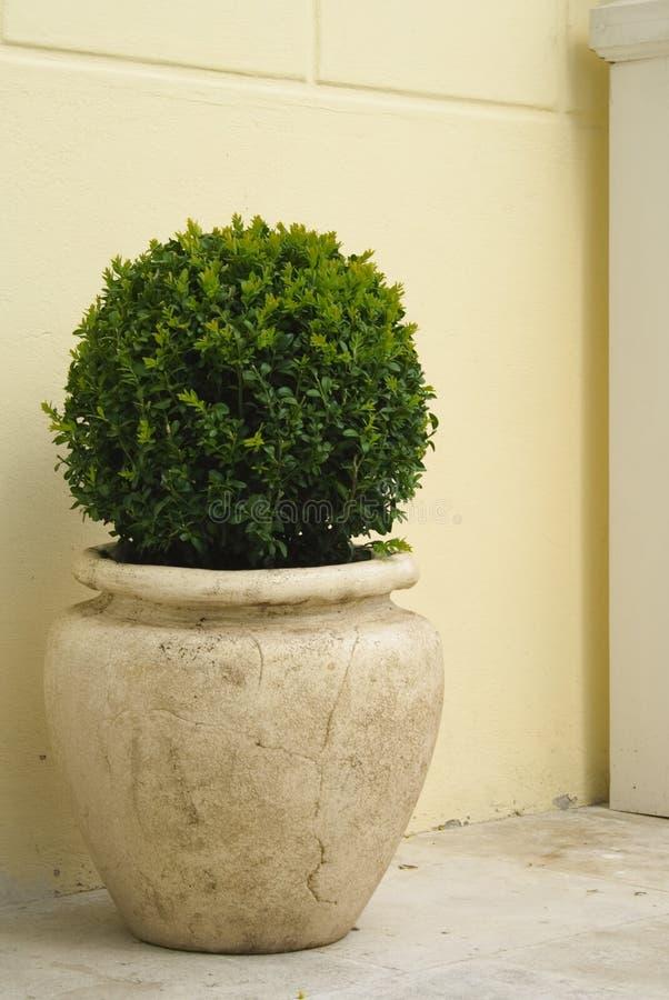 大陶瓷工厂罐 免版税库存照片