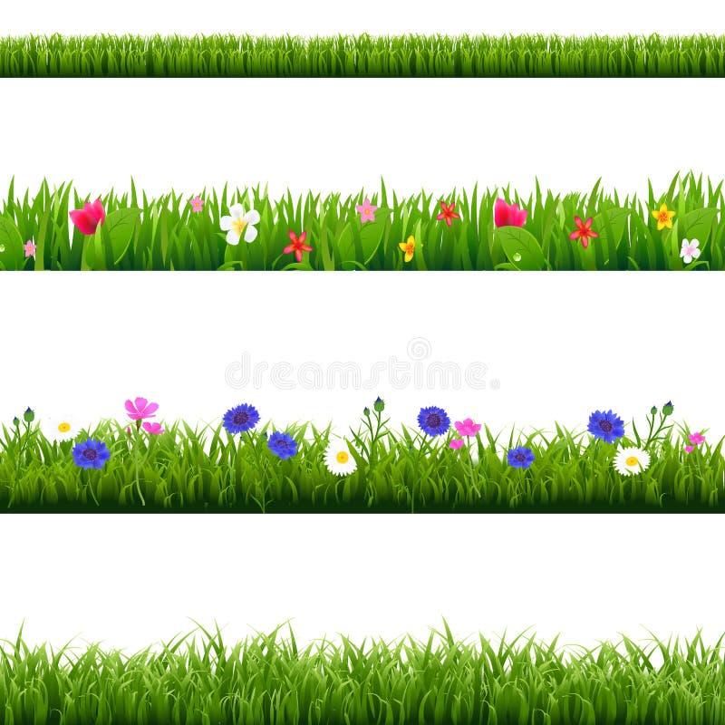 大集合绿草和春天花边界 库存例证