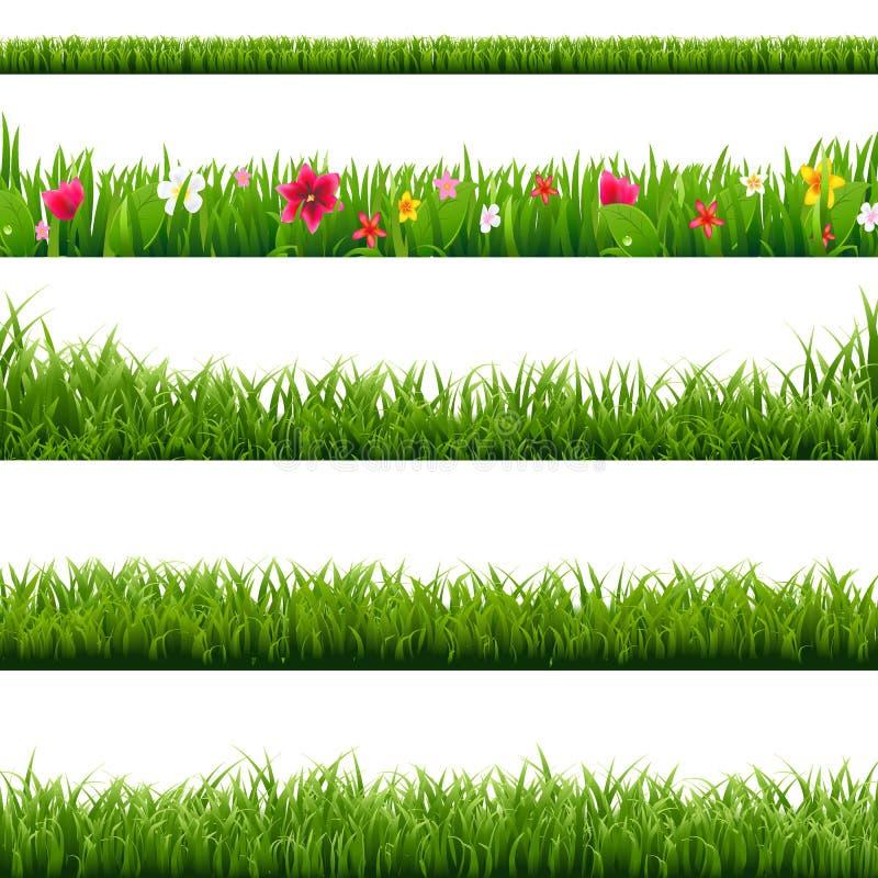 大集合绿草和花边界 向量例证