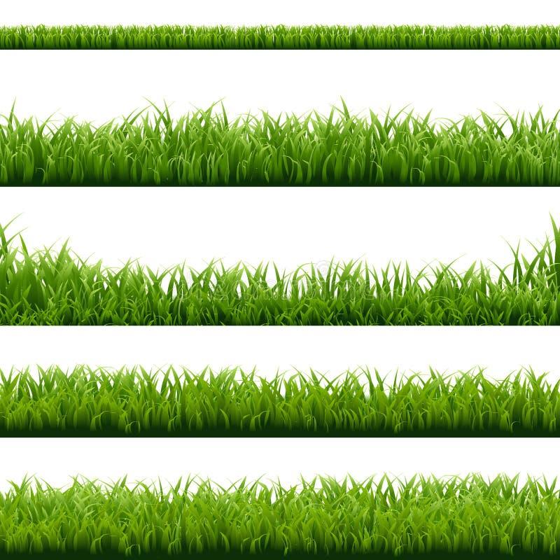 大集合绿草边界 库存例证