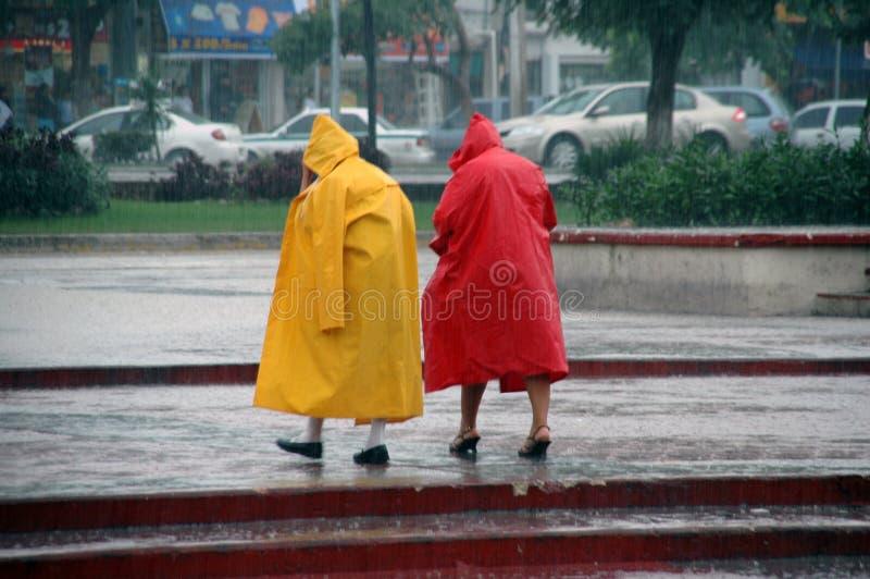 大雨 免版税库存照片