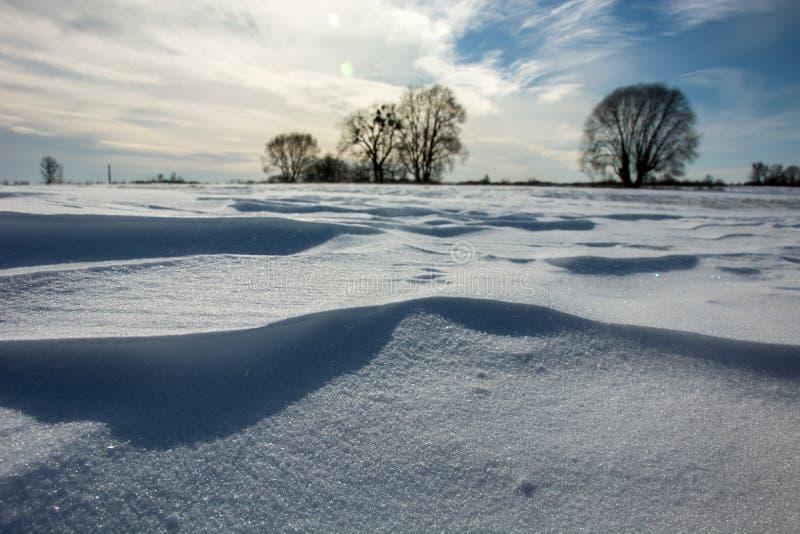 大雪沙丘在一冬天好日子 库存照片