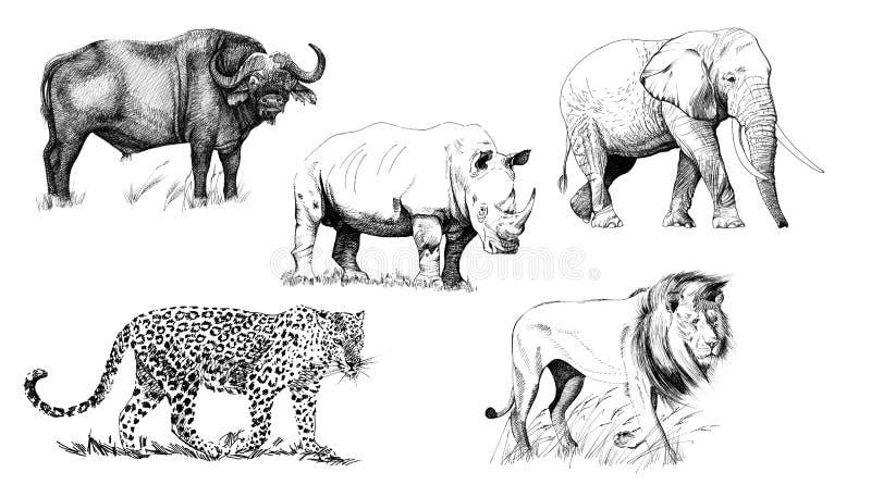 大非洲人五动物 象查找的画笔活性炭被画的现有量例证以图例解释者做柔和的淡色彩对传统 库存例证