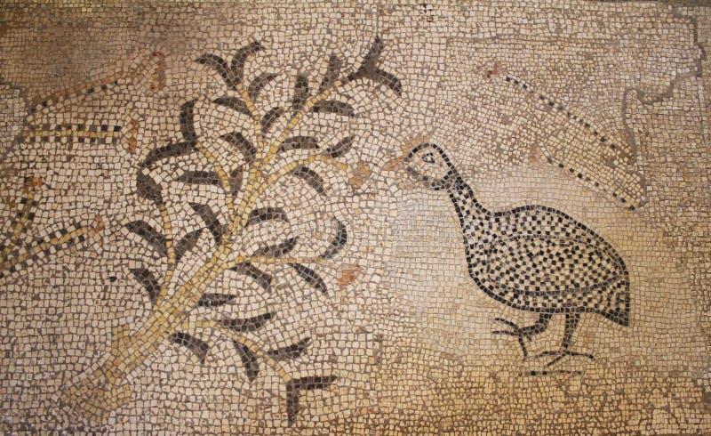 大面包和鱼,一部分的拜占庭式的拼花地板,Tabgha的五饼二鱼堂 图库摄影
