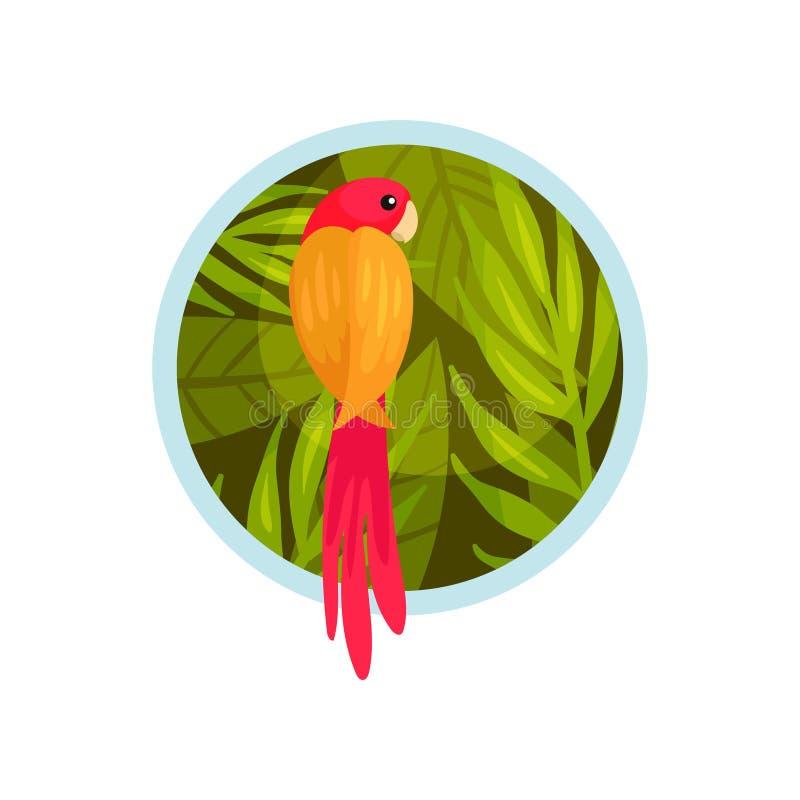 大鹦鹉 以圈子的形式夏天风景 r 库存例证
