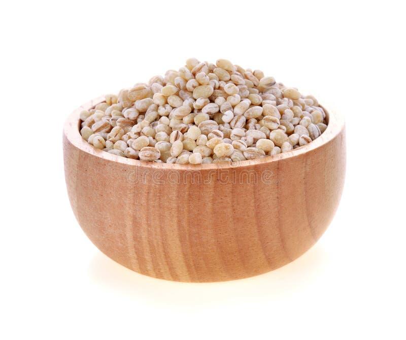 大麦在木碗的五谷种子 免版税库存图片