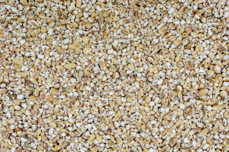 大麦沙粒背景  免版税库存照片
