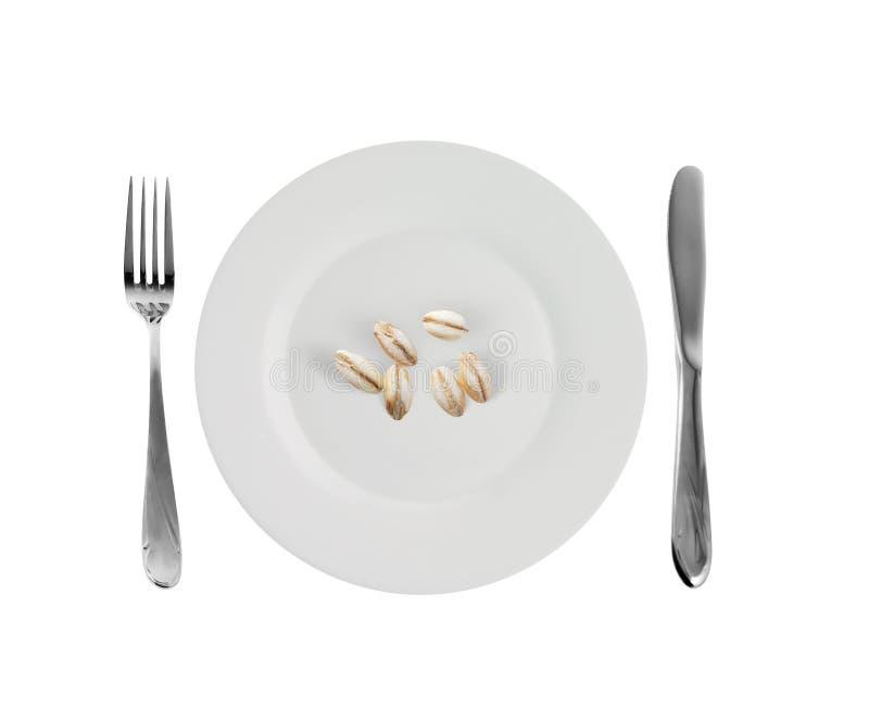 大麦盘珍珠素食主义者 免版税图库摄影