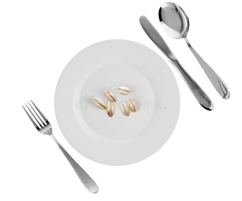 大麦盘珍珠素食主义者 免版税库存照片
