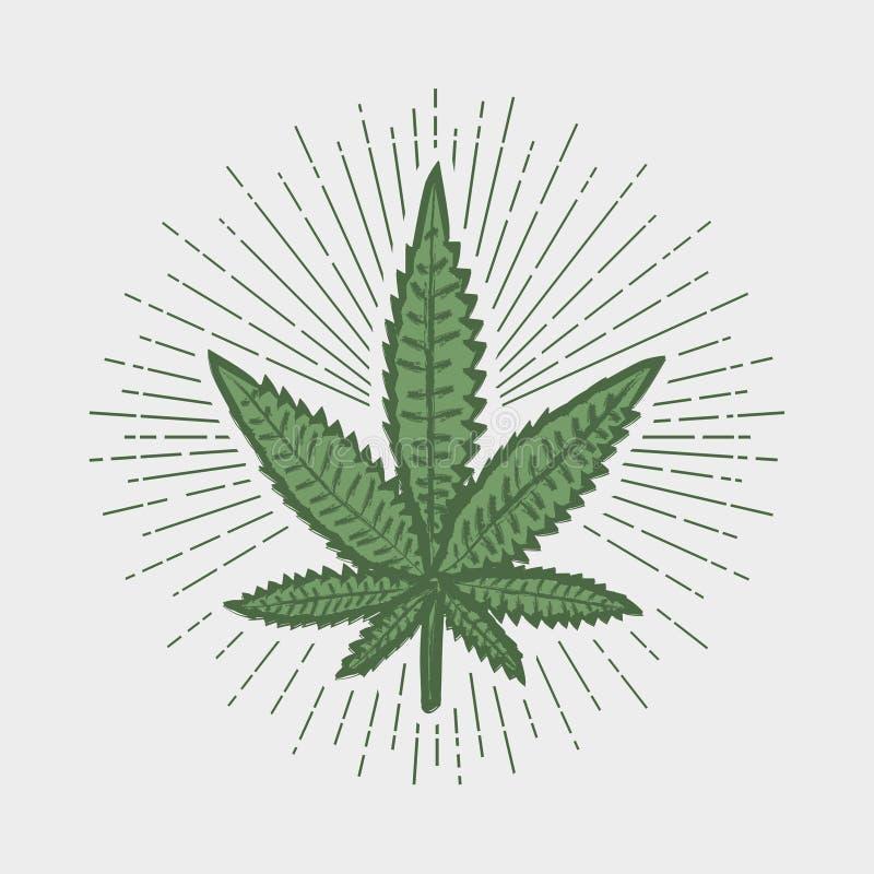 大麻叶子印刷品 与阳光的大麻邮票 也corel凹道例证向量 皇族释放例证