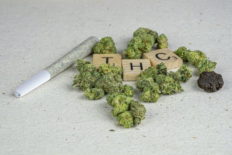 大麻芽 免版税库存图片