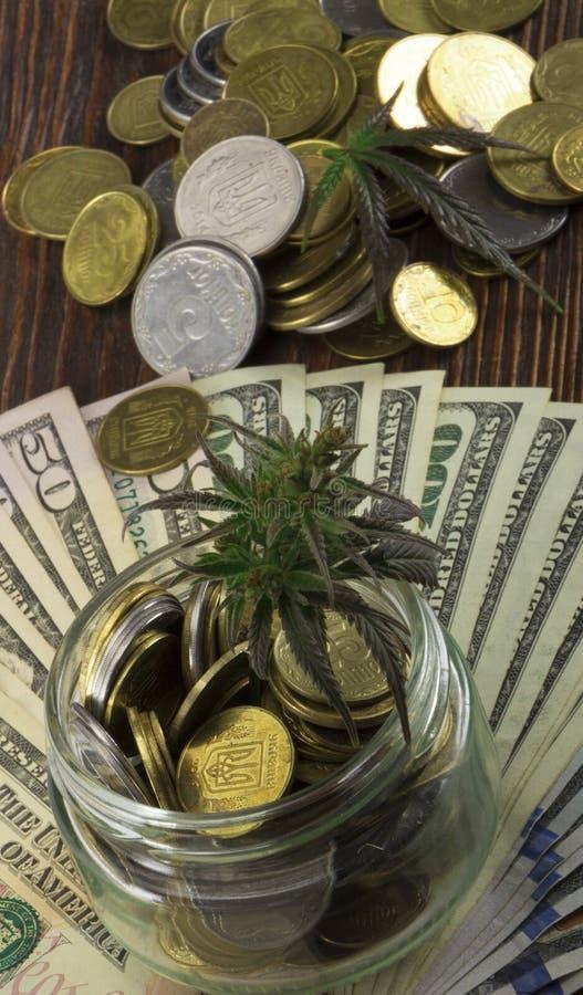 大麻,大麻, Ganja,在比尔的大麻绿色叶子100美元 到达天空的企业概念金黄回归键所有权 大麻叶子和美元 免版税库存图片