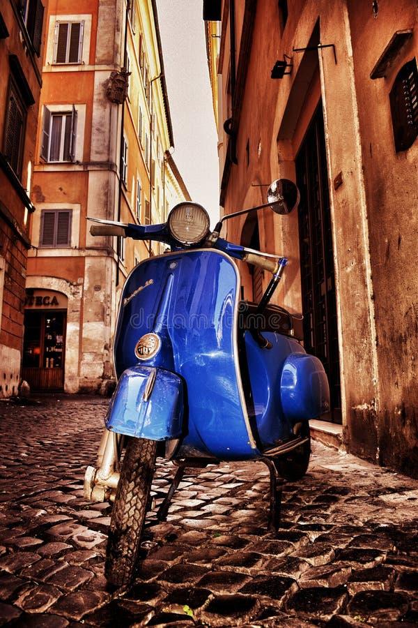 大黄蜂类蓝色在罗马 图库摄影