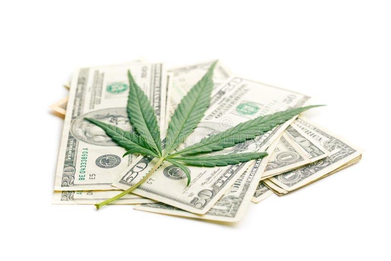 大麻叶子和金钱 免版税库存照片