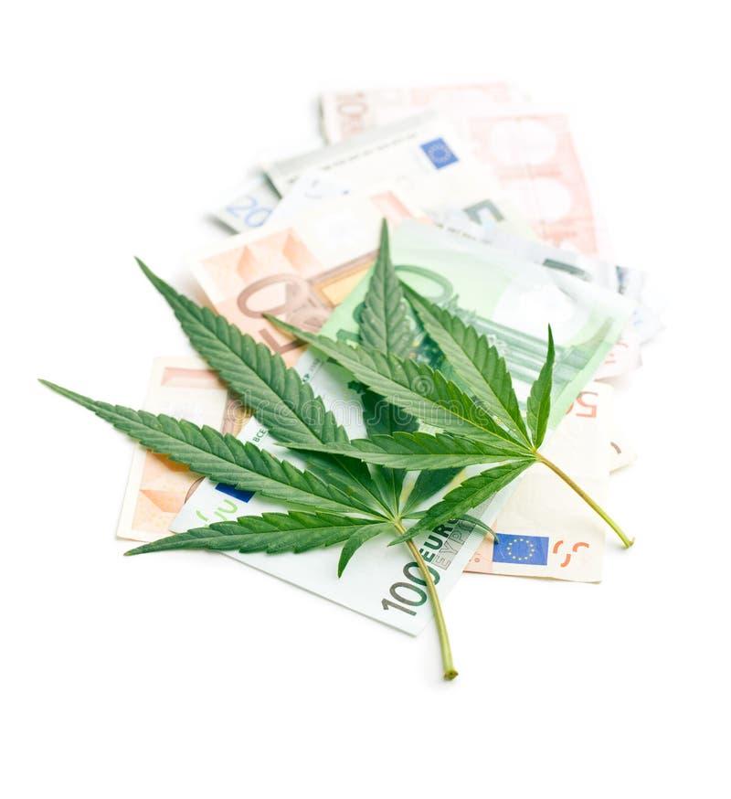 大麻叶子和金钱 免版税库存图片