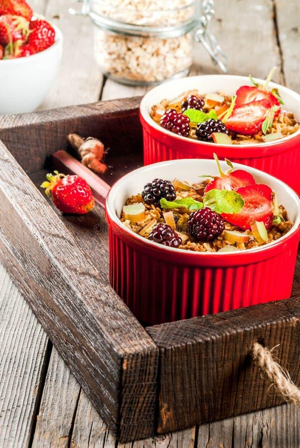 大黄和莓果燕麦粥碎屑 免版税库存图片