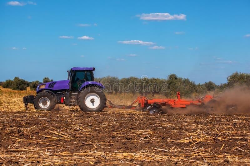大紫色拖拉机犁领域并且去除以前被割的向日葵遗骸  免版税库存图片
