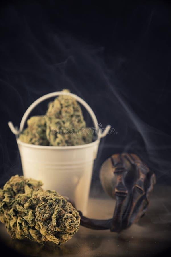 大麻芽& x28细节; nuken大麻 库存照片