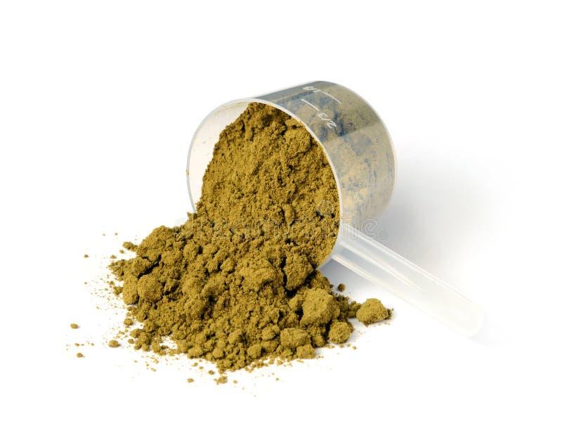 大麻蛋白质粉末 免版税库存照片