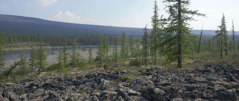 大kureika多数全景高原强大的putorana俄国西伯利亚瀑布 免版税库存照片