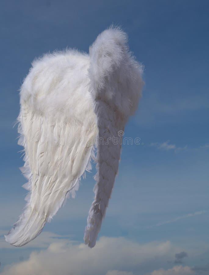 天使圣诞节翼 免版税库存图片