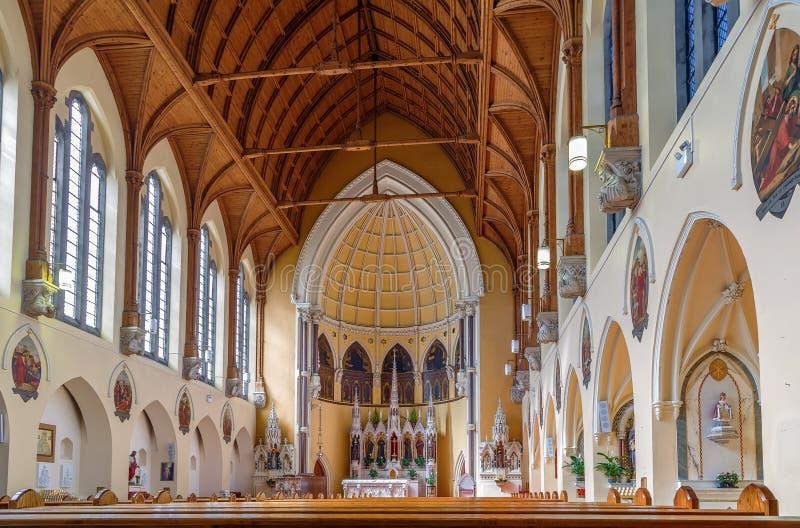 天使教会,都伯林,爱尔兰的圣玛丽 免版税库存图片
