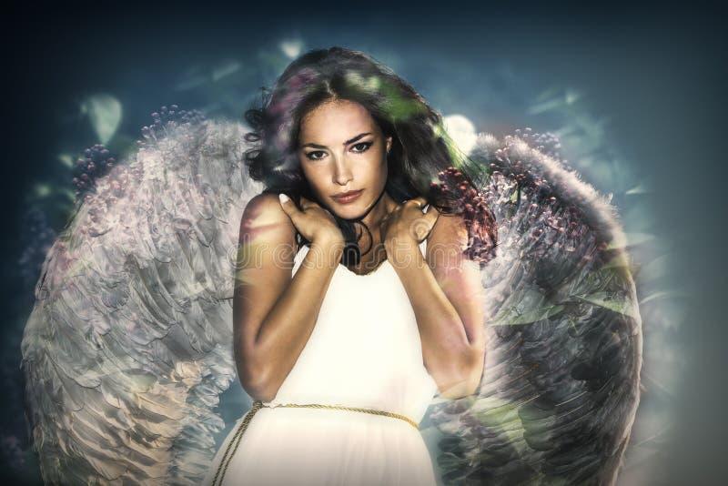 天使秀丽装饰您设计的向量 免版税库存照片