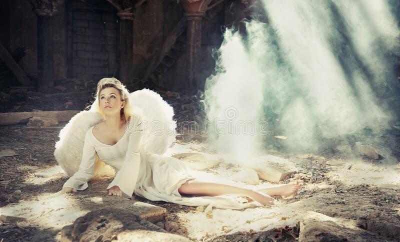 天使秀丽 库存照片