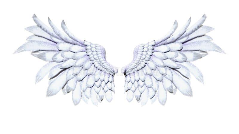 天使翼,在白色背景的白色翼全身羽毛 库存例证