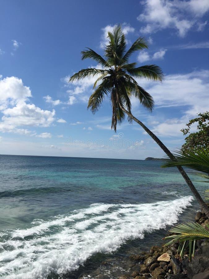 天堂在尼加拉瓜 库存图片