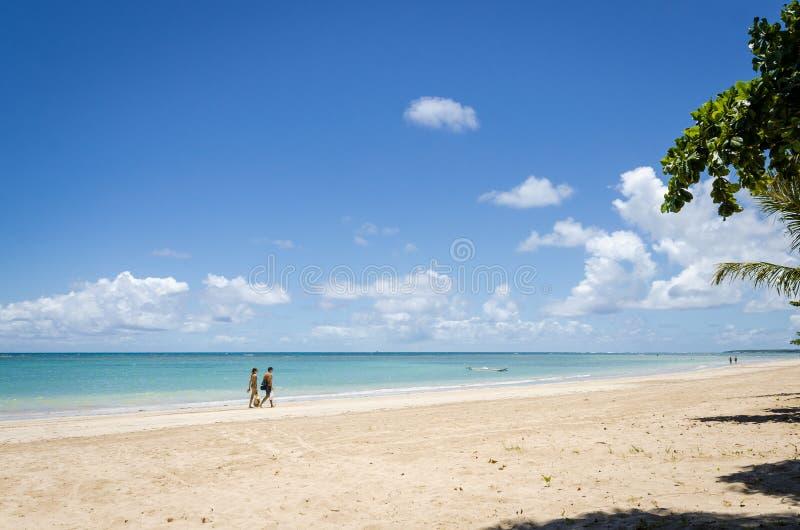 天堂处女海滩在巴西,第4个海滩在Morro de圣保罗 库存照片