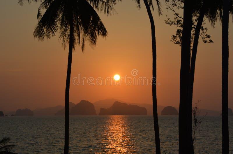 天堂海岛日落热带椰子树 免版税库存图片