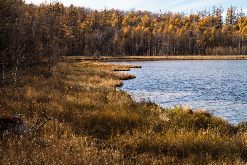 天堂湖的角落Arshaan的 库存照片