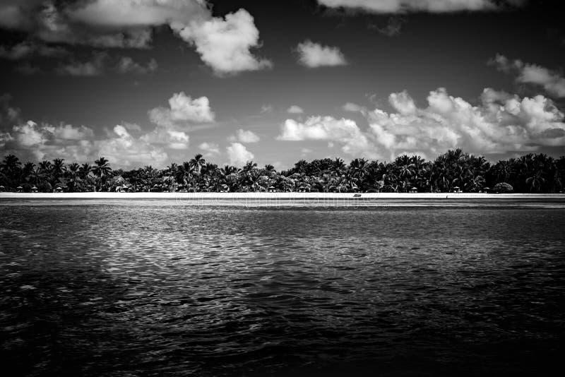 天堂热带海岛海滩,日出射击风景  剧烈的海滩背景 免版税库存照片